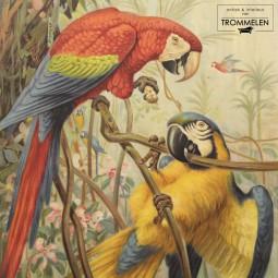 Dubbelzijdige schoolplaat: papegaai / oesters