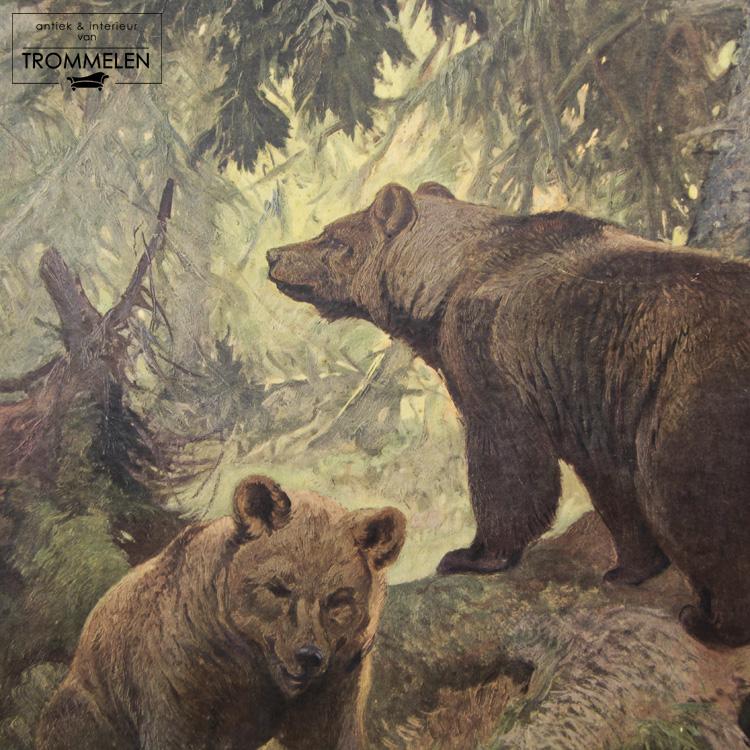 Dubbelzijdige schoolplaat: beer / zeevissen