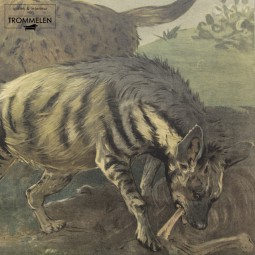 Antieke schoolplaat: hyena