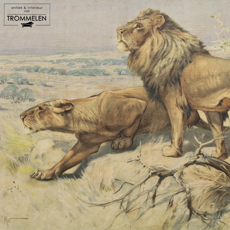 Antieke schoolplaat: leeuw