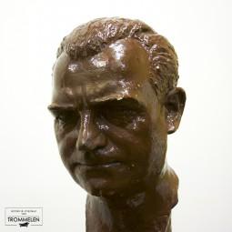 Mannelijke buste