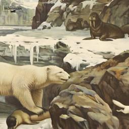 Antieke schoolplaat: ijsbeer