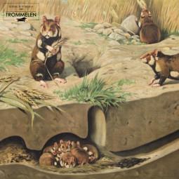 Dubbelzijdige schoolplaat: hamster / duiven
