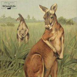 Dubbelzijdige schoolplaat: kangoeroe / rozenluis