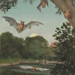 Dubbelzijdige schoolplaat: vleermuis / lintworm